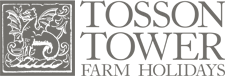Tosson Tower